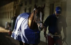 California Chrome on target for Belmont Stakes