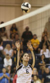 Bishop Noll/Whiting volleyball