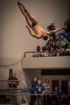 Griffith's Alex Rosales finished fourth in diving (444.6) at the state finals Saturday.