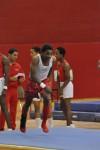 Homewood-Flossmoor gymnast Corey Bell