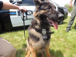 New K-9 joins Crown Point ranks