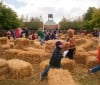 Straw Maze at Chicago Botanic Garden Fall Bulb Festival