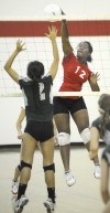 VOLLEYBALL-EVERGREEN PARK AT TFS