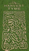 Harvest Tyme Family Corn Maze