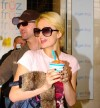 Paris Hilton's 'favorite' frozen yogurt coming to Downtown Chicago