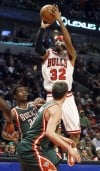 Richard Hamilton, Bulls