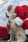 Santa has tails wagging at Welcome Center