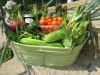 Vegetable Basket Bounty From the Farm