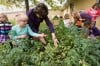 South Haven kindergartners reap rewards of teaching garden