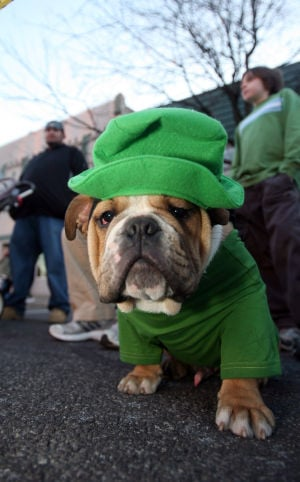Start a St. Patrick's Day family tradition