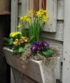 Window boxes are raised-bed gardening writ small