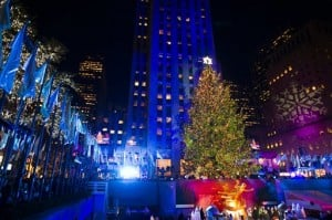 Holiday events: Trees, lighting displays and more