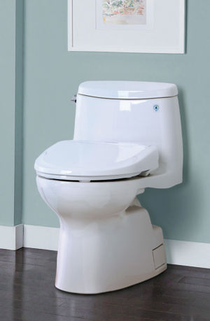 High-tech toilet seats: no hands or paper required