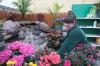 Annual flower & garden show