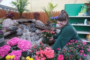 Annual Flower & Garden Show Celebrates Spring!