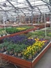 Alsip Home & Nursery
