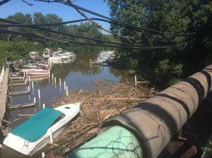 Log jam to be removed from Burns Waterway