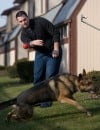 True blue on the street and at home: Police dogs earn their keep