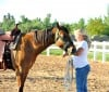 4H Horse and Pony Workshop_4.jpg