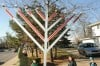 Hanukkah celebrates miracle of the lights during eight-day festival