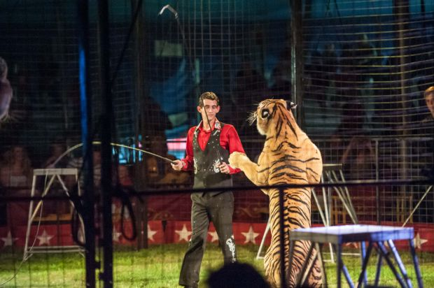 Protest planned at circus in Lowell, Schererville