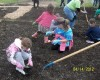 Families invited to plant a garden