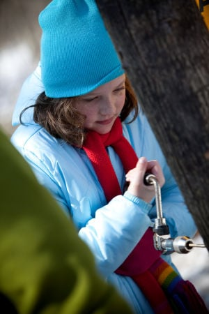 Dunes camp teaches families about maple sugaring