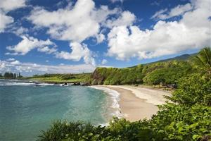 Trans-Pacific cruise relaxing economical way to see Hawaiian islands