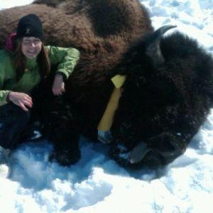OFFBEAT: Munster grad turned wild animal vet nets new reality TV series