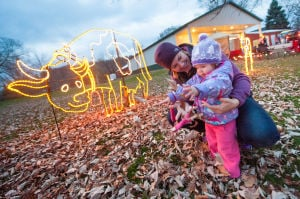 Winter Lights Festival dazzles