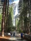 Even urbanites can navigate a park like Yosemite