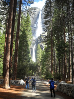 Even urbanites can navigate a park like Yosemite