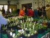Wild Ones group promotes use of natural plants