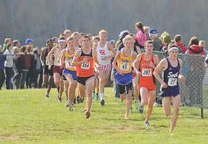 Gallery: Indiana state cross country meet
