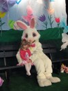 Bunny hops to Lowell for early visit