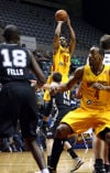 FT. WAYNE MAD ANTS
