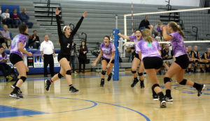 Vikings win DAC volleyball title