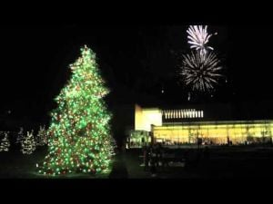 Valparaiso University Lights its Christmas Tree