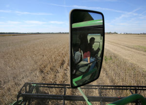 Fall harvest better than expected after dry, hot August