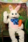 Easter Bunny helpers cover the region