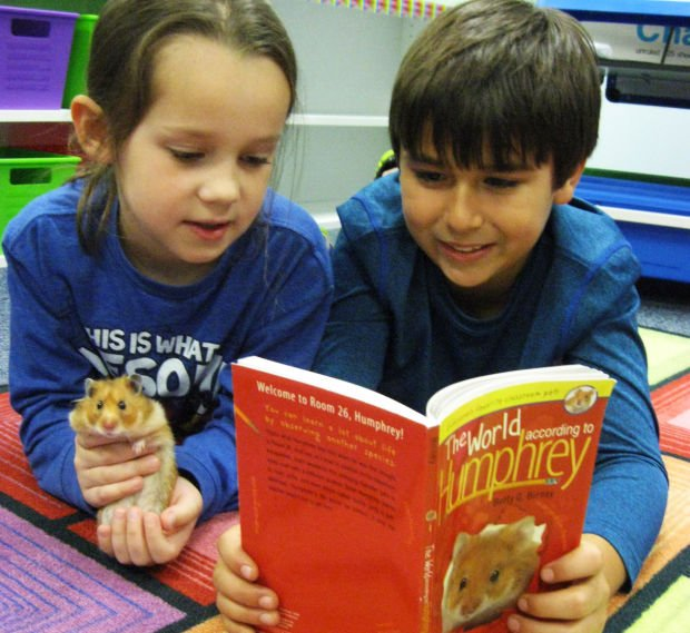 Hampster makes reading impact at Bibich Elementary