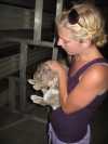 74 rabbits taken from alleged hoarder house