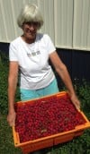 Blueberry Farm Wife Wanda Bonnell and Bounty of Tiny Crabapples