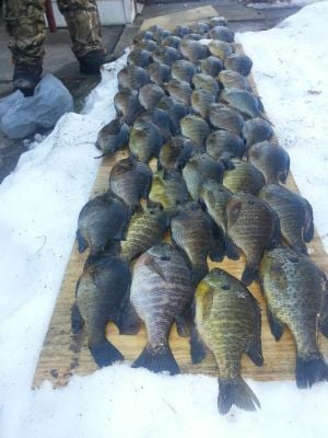 Region hasn't seen ice fishing like this for many winters