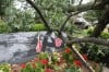 Central Park War Memorial damaged by storm