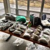 Drug busts net 60 pounds of marijuana, cash and SUV