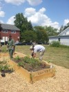 Valparaiso community garden was almost a no-grow