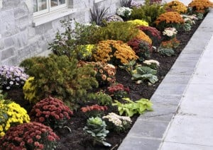 Boosting home's curb appeal is quick, easy