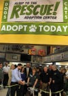 Humane Society applauds Alsip Nursery's puppy-friendly commitment