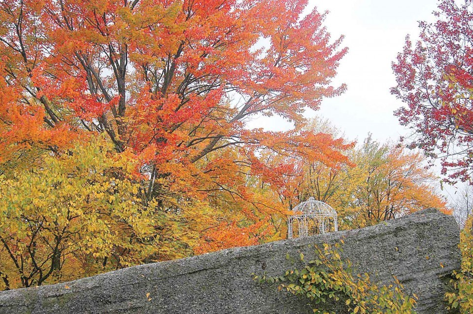Fall colors at Rock City Park